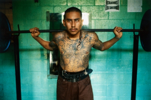 Photo musculation en prison Gang