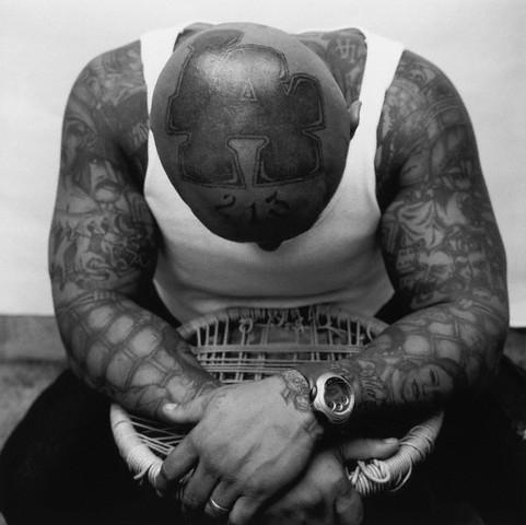 Photo tatouage sur crâne Tatouage