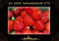 Magazine photoshop Le Petit Infographiste